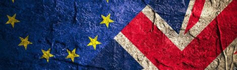 The UK should not be forced to quickly leave the EU