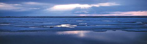 Arktikaga seotud julgeoleku- ja keskkonnariskid mõjutavad ka Eestit